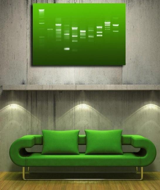 quadros adn da helys decora o da casa. Black Bedroom Furniture Sets. Home Design Ideas