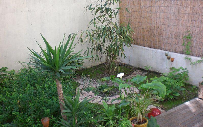 fotos de jardim na varandaum mínimo de atenções para poder crescer
