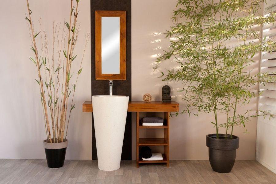 Casas de banho feng shui decora o da casa for Plantas para dormitorio feng shui