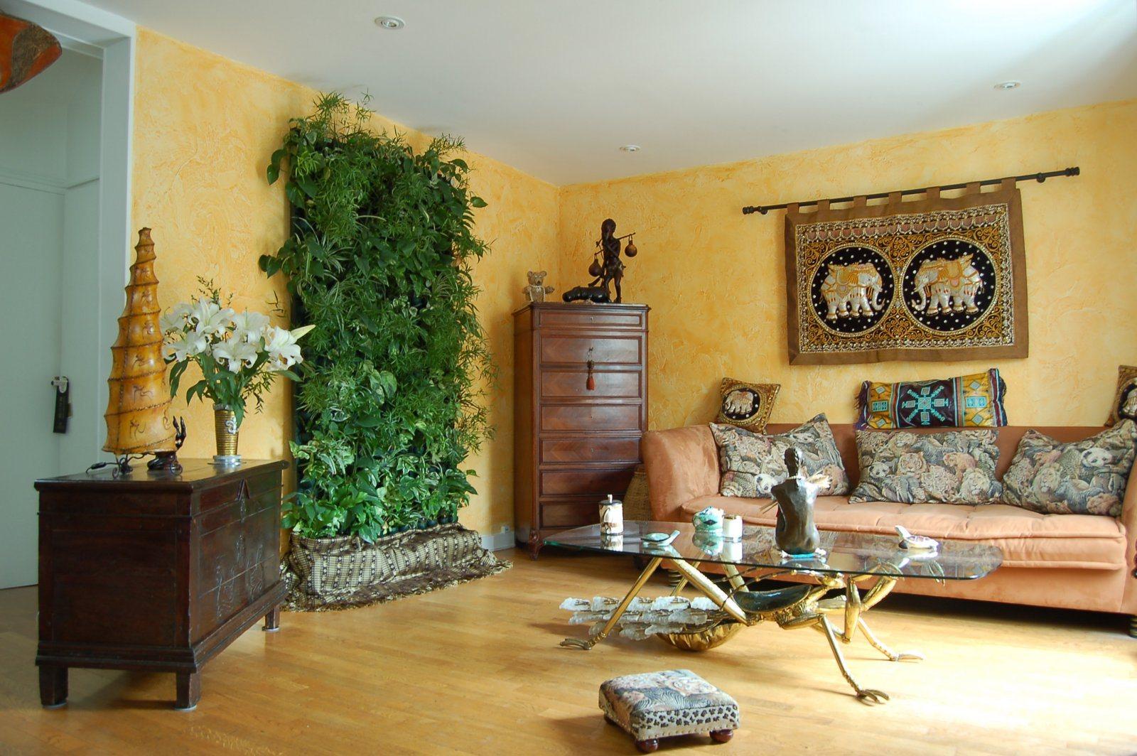 Plantas de interior decora o da casa Plantas de interior toxicas
