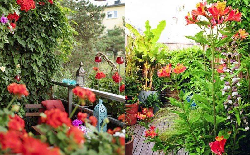 jardim resistentesNão duvides em recorrer a plantas artificiais para